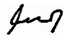 Vojin Signature